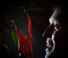 Richard Alker The ChilliMan from Little Green Men Holding Chilis in the Press and Media